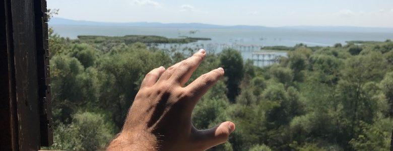 Manyas Kuş Cenneti Gezi Rehberi